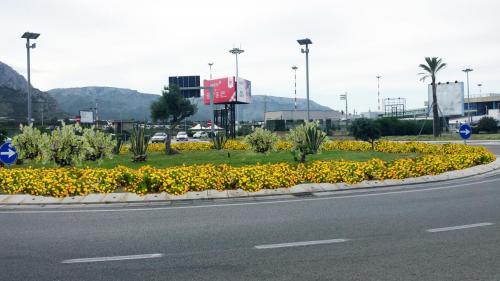 gesap-aeroporto palermo-aiuola